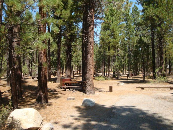 Old Shady Rest Campground SITE 40