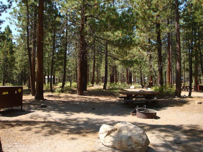 Old Shady Rest Campground SITE 44