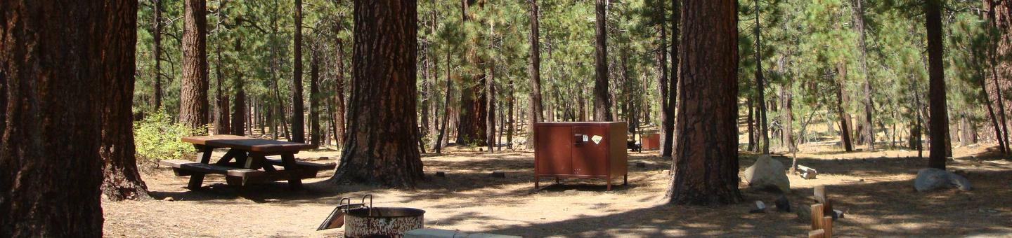 Old Shady Rest Campground SITE 48