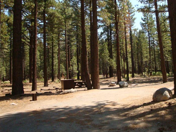 Old Shady Rest Campground SITE 49