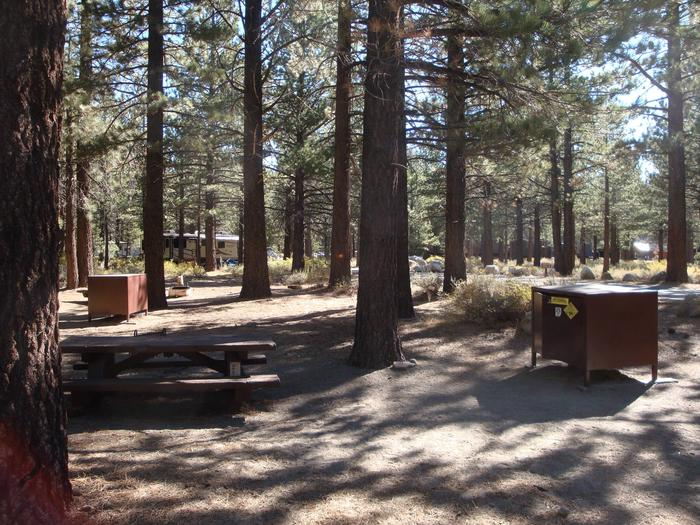 New Shady Rest Campground SITE 69