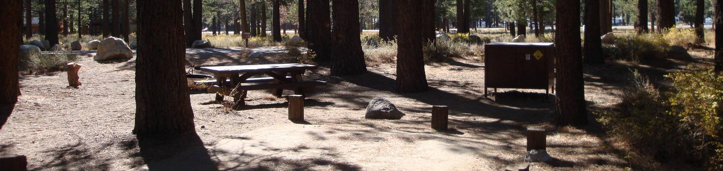 New Shady Rest Campground SITE 71