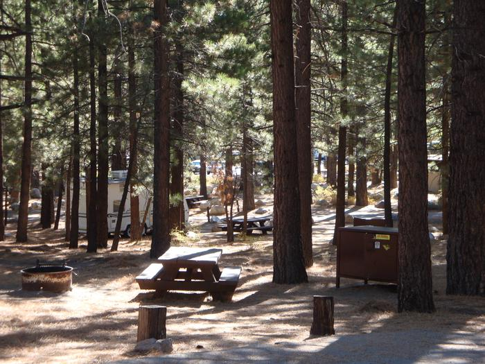 New Shady Rest Campground SITE 74