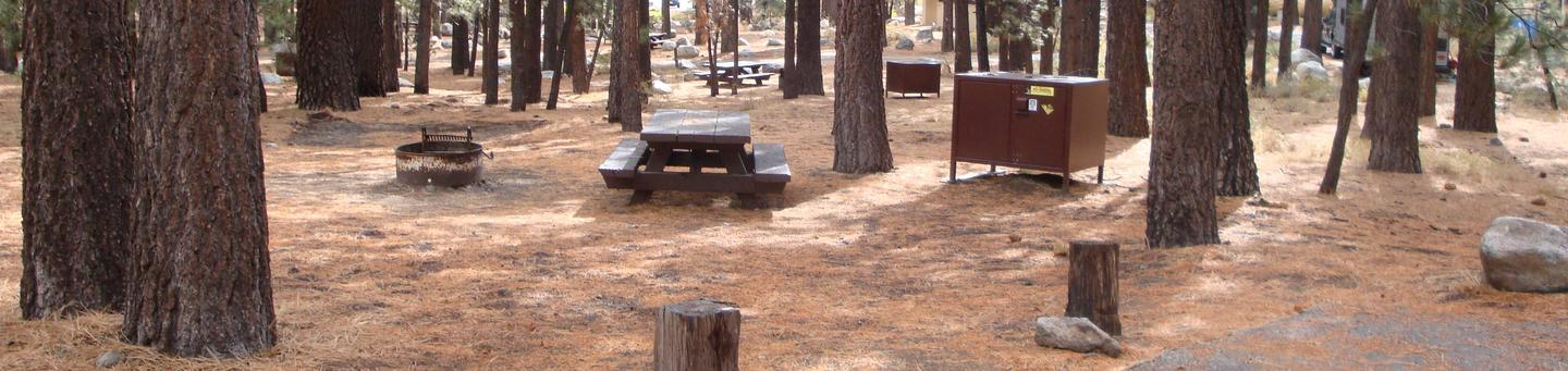 New Shady Rest Campground SITE 75