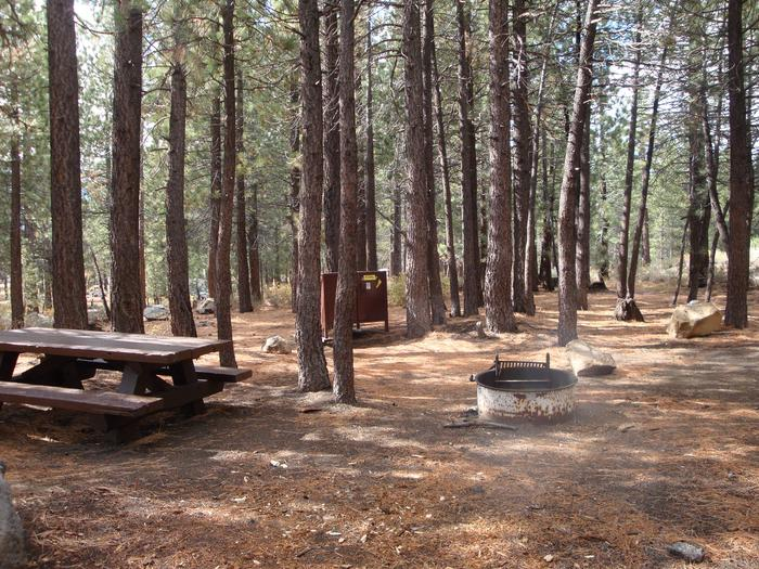 New Shady Rest Campground SITE 76