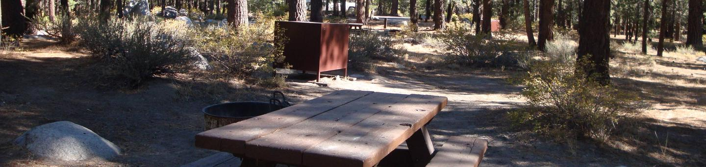 New Shady Rest Campground SITE 81