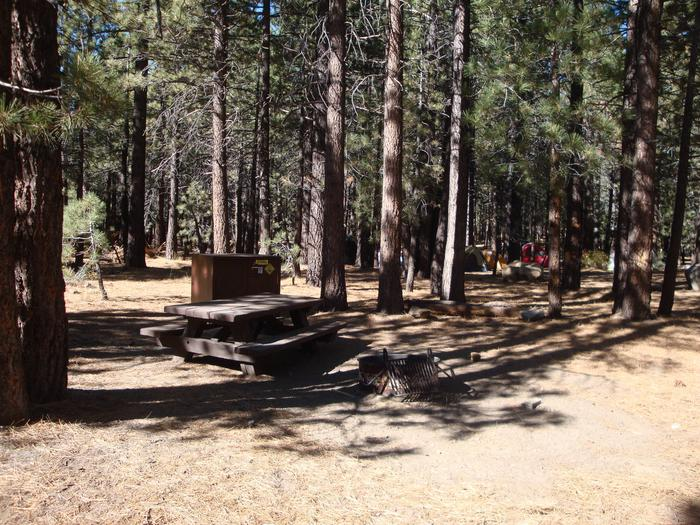 New Shady Rest Campground SITE 82
