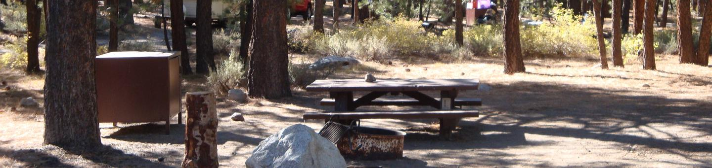 New Shady Rest Campground SITE 85