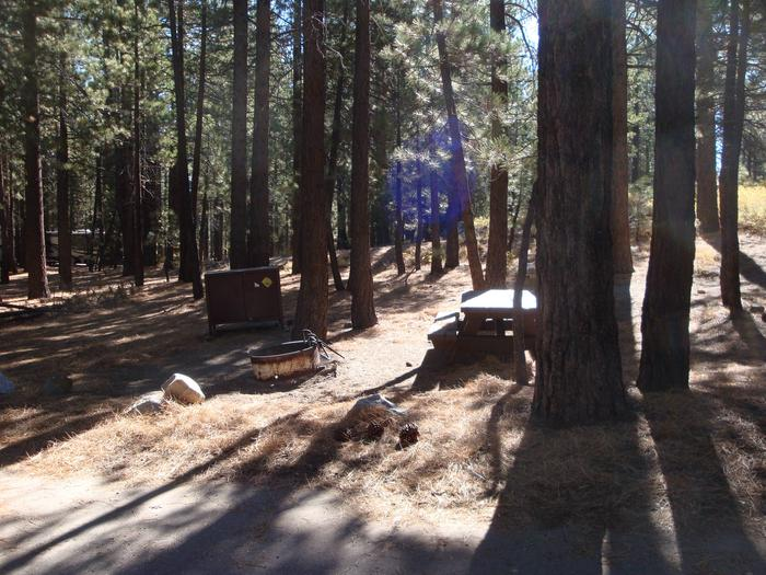 New Shady Rest Campground SITE 87