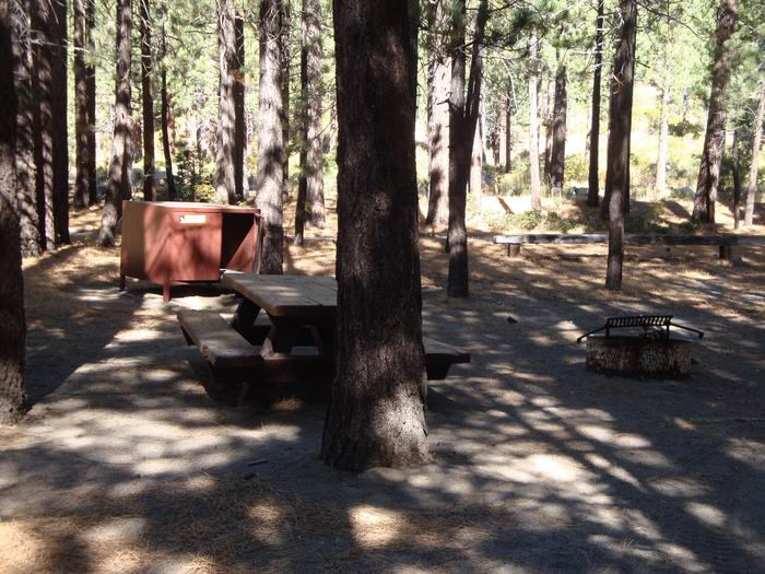 New Shady Rest Campground SITE 98