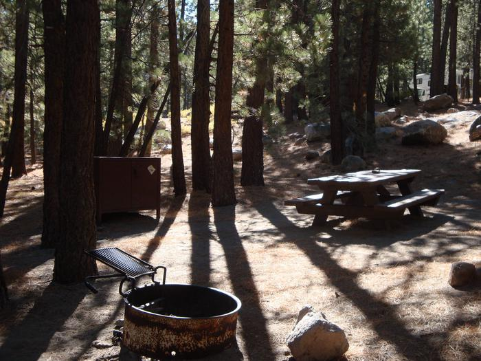 New Shady Rest Campground SITE 99