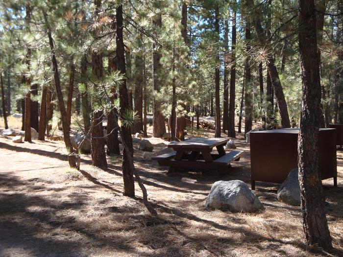 New Shady Rest Campground SITE 100