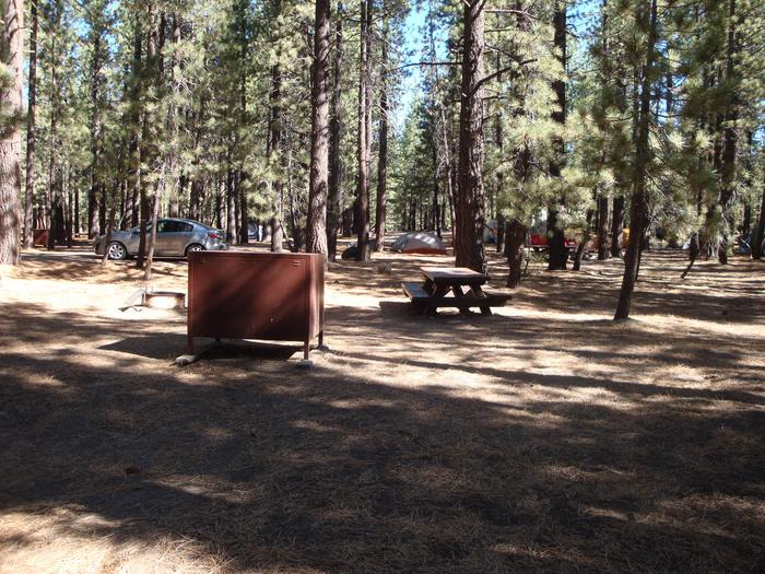 New Shady Rest Campground SITE 101