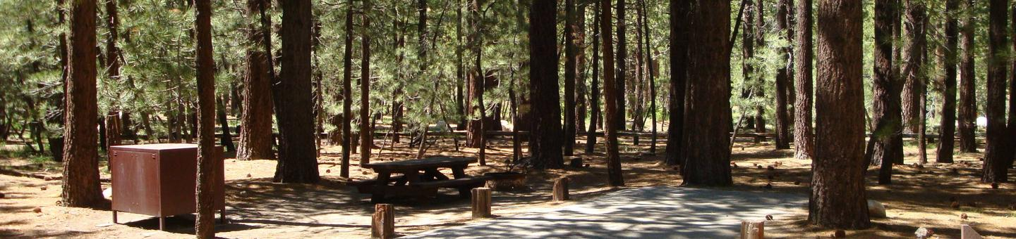 New Shady Rest Campground SITE 103