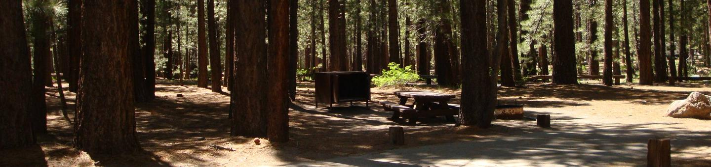 New Shady Rest Campground SITE 105