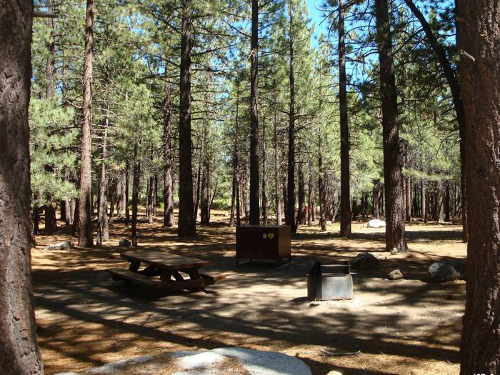 New Shady Rest Campground SITE 107