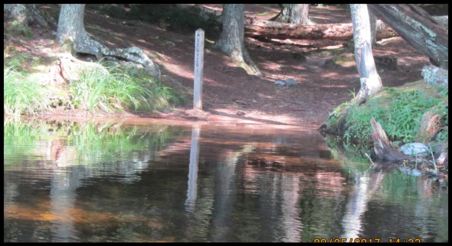 Beaver 1 Landing photo.This landing is sandy, there are large down trees in the water, and a flat area around the landing for adequate swimming.