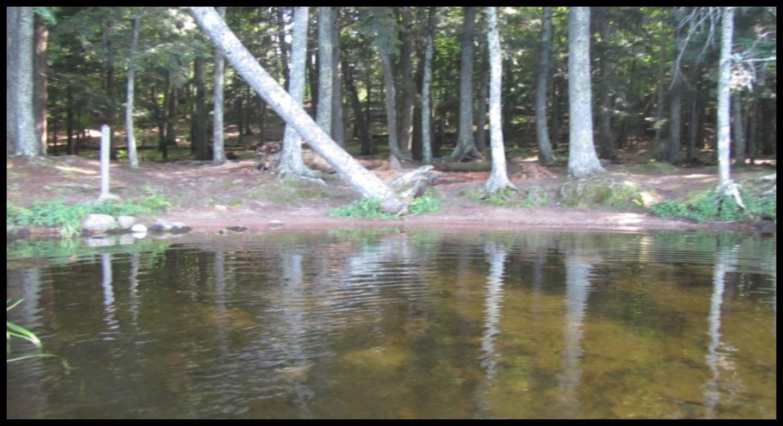 Beaver 2 Landing photo.Landing photo.