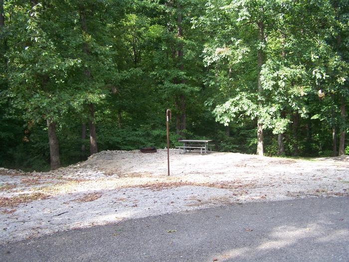 Cave Creek - Site D40