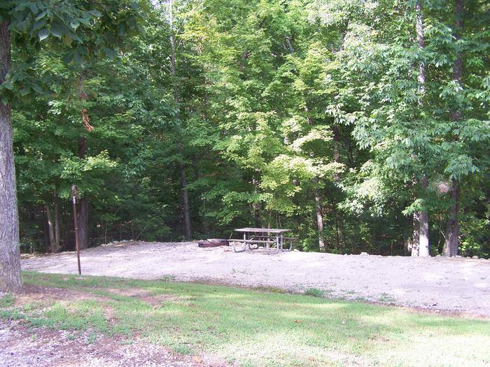 Cave Creek - Site D44