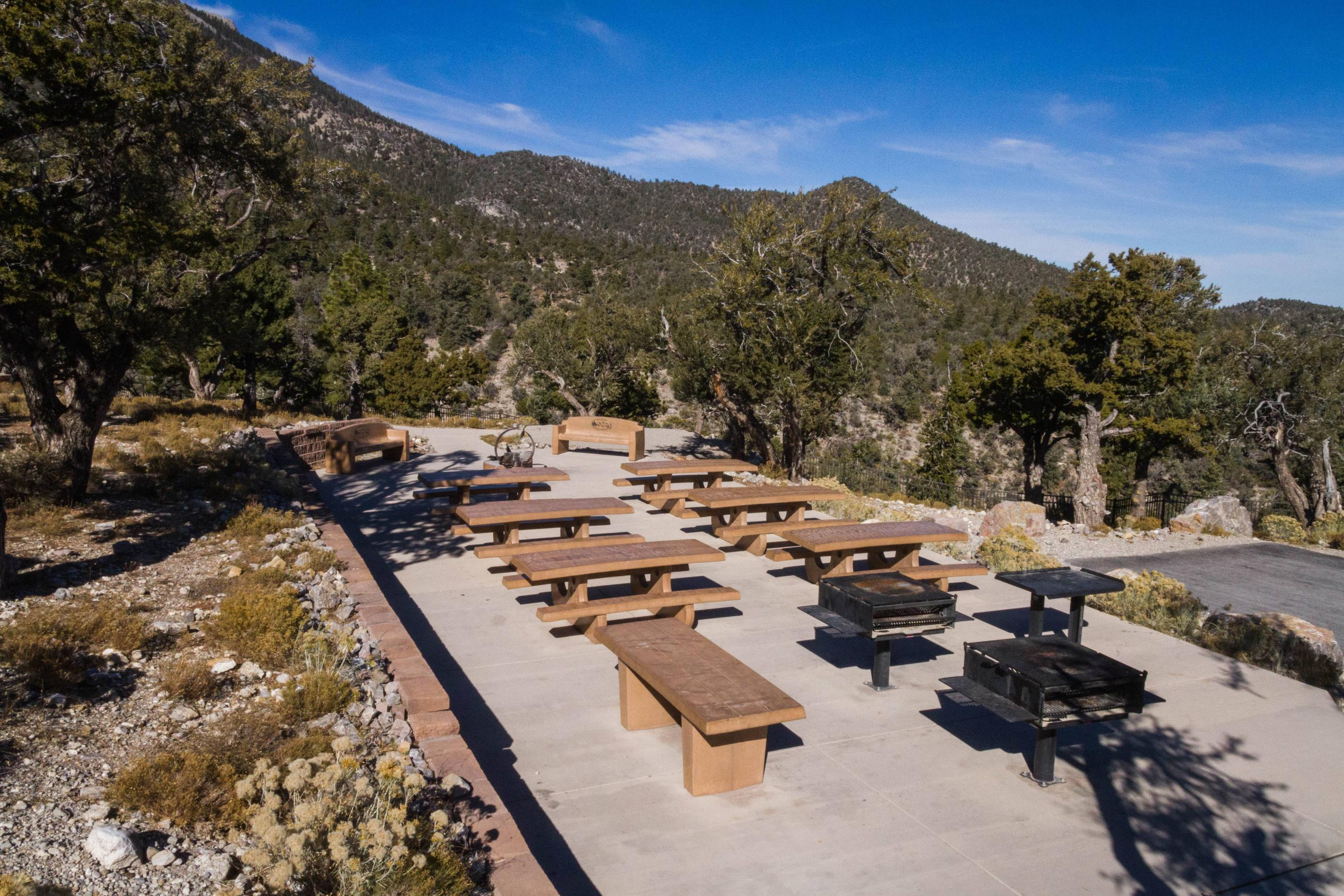 Picnic tablesCCC Site tables and grills