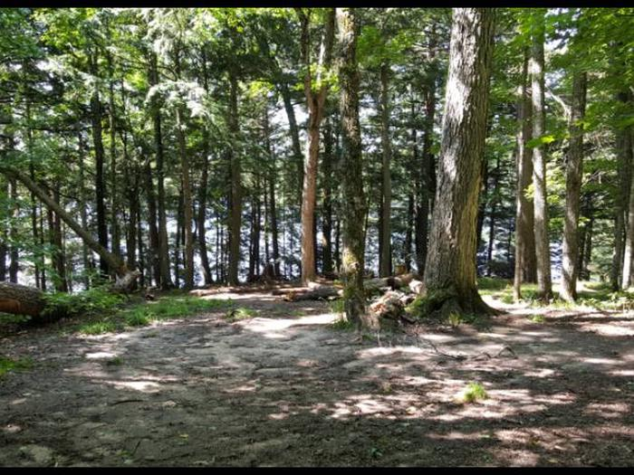 Wolf Campsite photo.This campsite has room available for 2 to 3 tents.