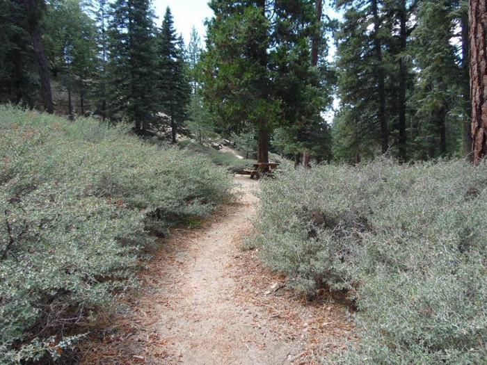 Hanna Flat short hike to sitesite 57 short hike to site