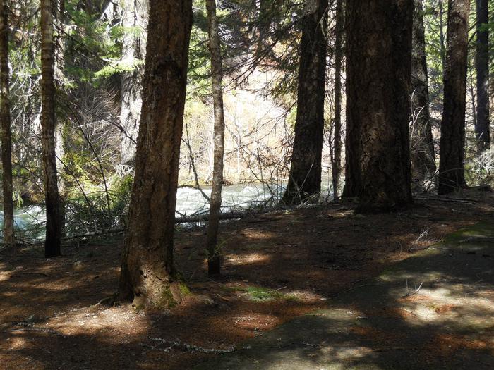 Next to the Rogue River.Next to the Rogue River.