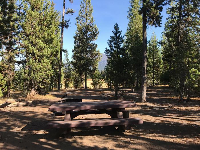 Mallard Marsh CampgroundSite 7