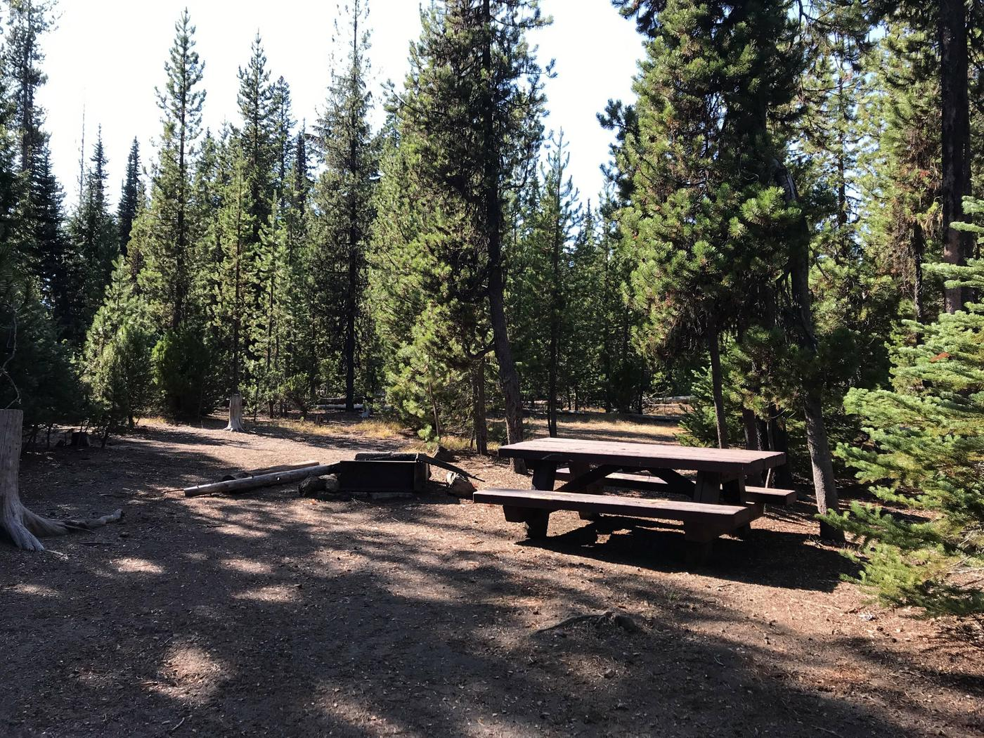 Mallard Marsh CampgroundSite 8