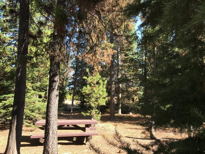 Mallard Marsh CampgroundSite 10