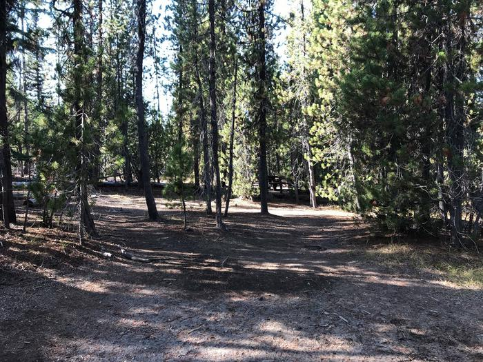 South CampgroundSite 4
