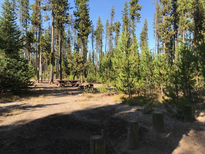 South CampgroundSite 15