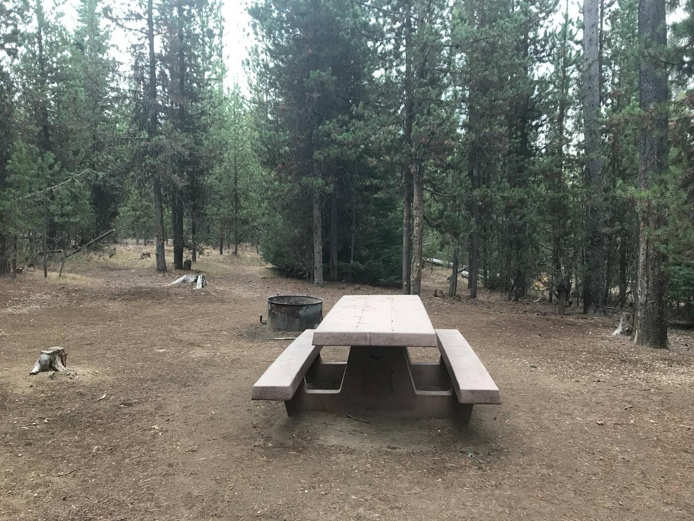 Lava Lake CampgroundSite 31
