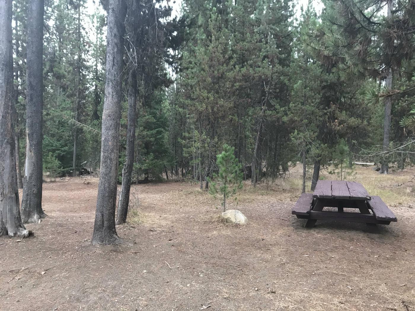 Lava Lake CampgroundSite 35