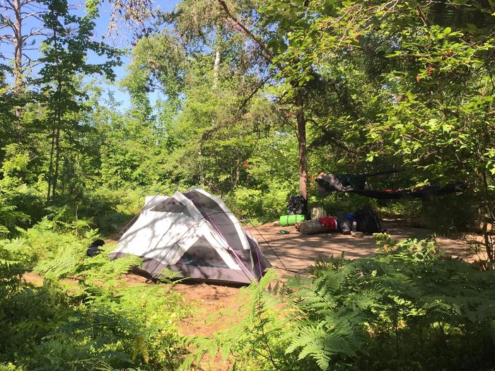 Backcountry Camping - Benchmark SiteBackpacking and camping are a popular activities.