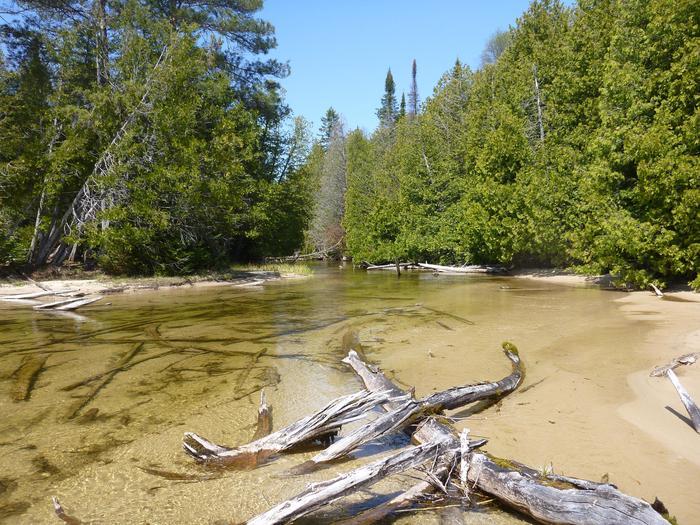 Beaver Basin WildernessShallow creek in the Beaver Basin Wilderness