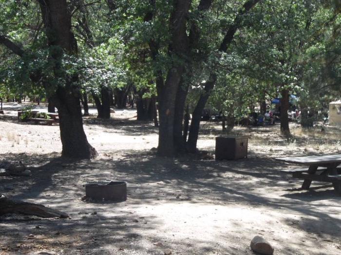 San Gorgonio site 35site 35