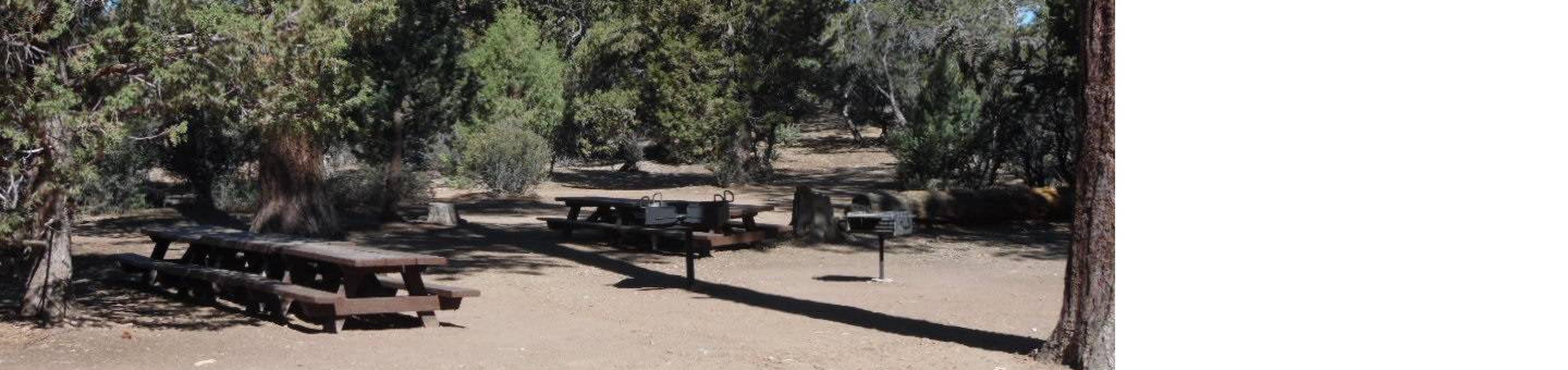 Picnic Tables and Group Fire Circle at Tanglewood Group Camp Sign