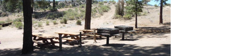Ironwood Group Camp