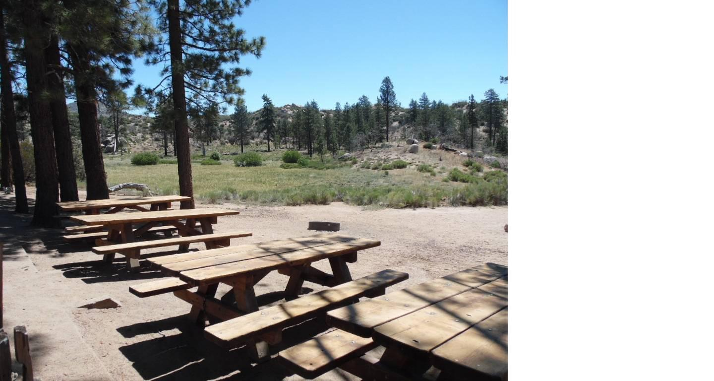 Ironwood Picnic Tablespicnic tables