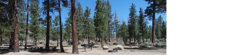 Big Pine GroupGroup camp