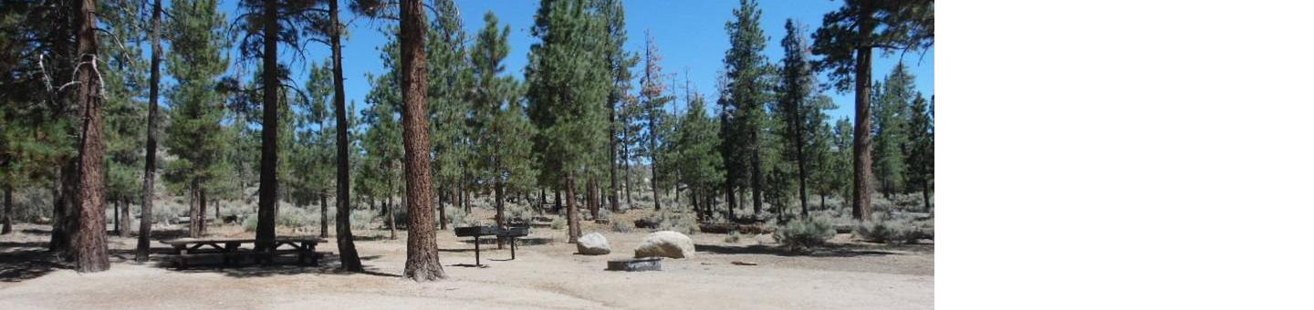 Picnic Table Area at Big Pine Equestrian Group Campground
