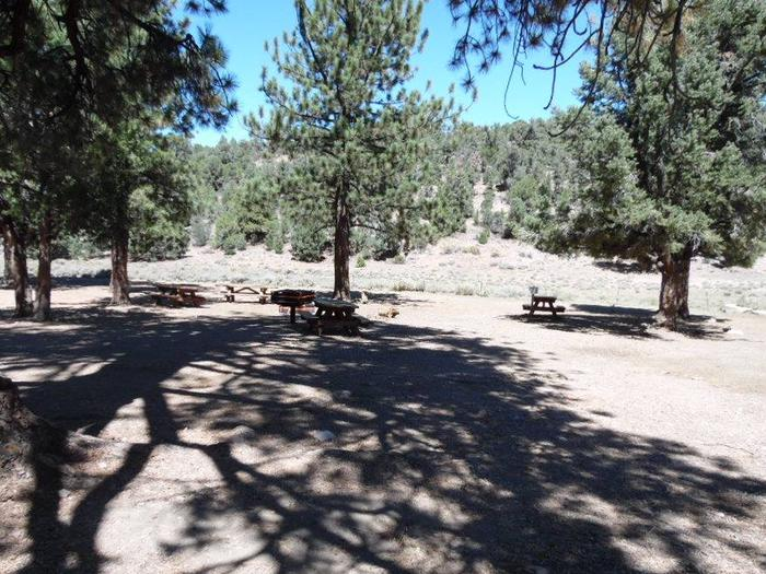 Juniper Springs GroupGroup Camp