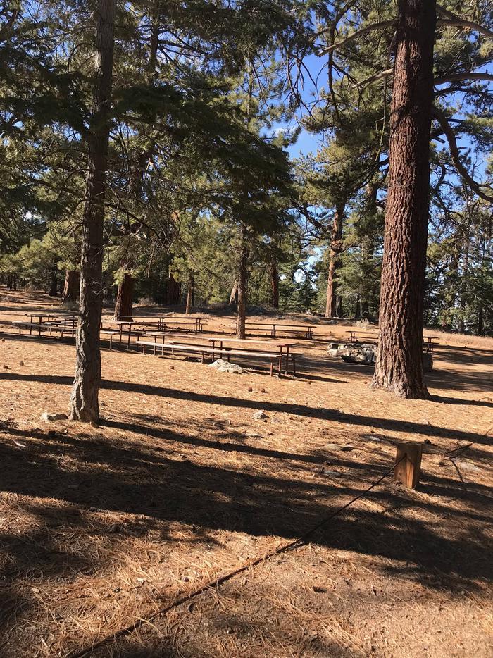 Campo Alto CampgroundGroup Site 1