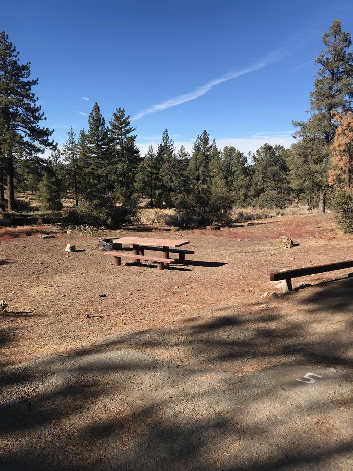 Chuchupate CampgroundSite 5