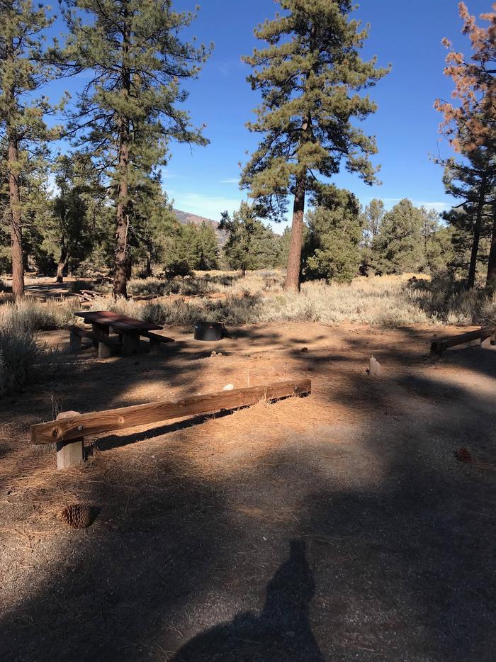 Chuchupate CampgroundSite 10