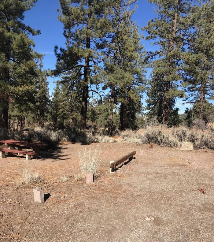 Chuchupate CampgroundSite 12