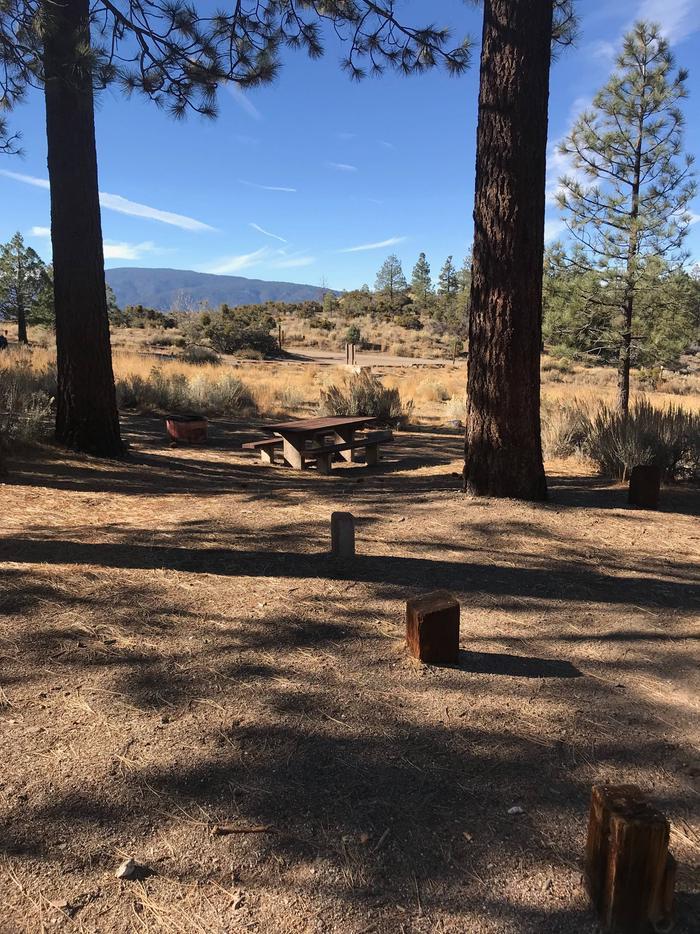 Chuchupate CampgroundSite 14