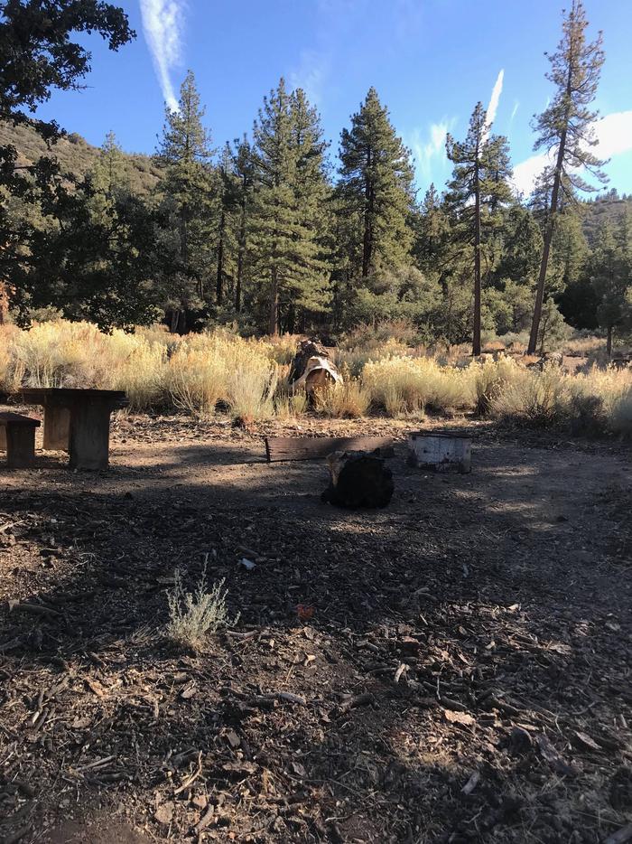 Chuchupate CampgroundSite 17